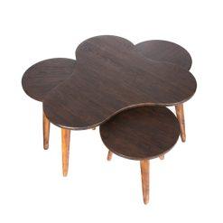 میز جلو مبلی طرح گشنیز قهوه ای (ونگه) کد A8-BR